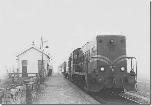 De klompentrein te Deinum in 1962